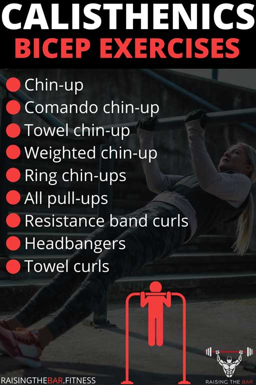 Infographic with a list of calisthenics bicep exercises and a chip-up image